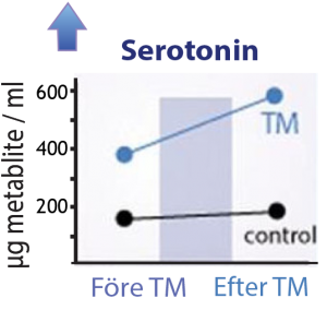 Ökat serotonin